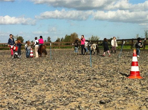 Paardenfeestje bij Stal Oostwal
